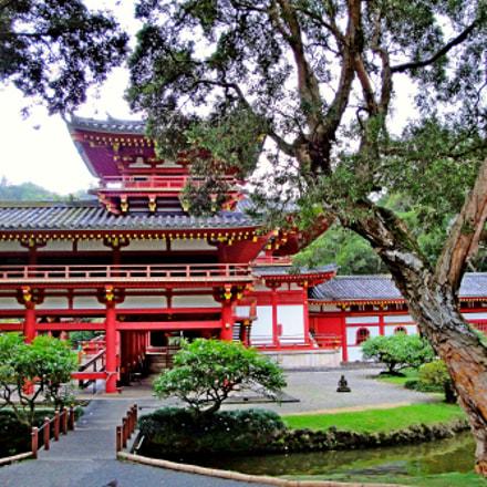 Byodo In Temple Oahu, Sony DSC-W290
