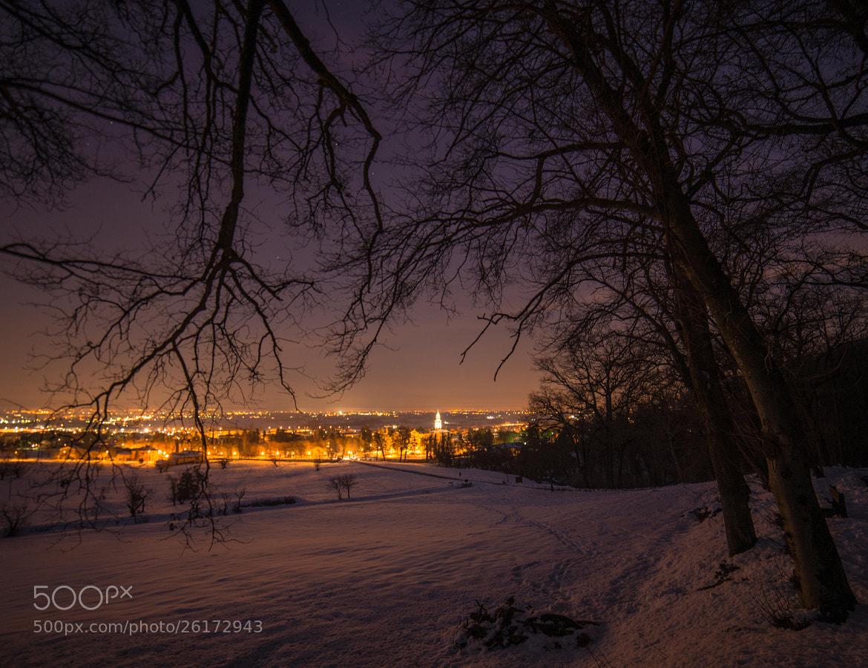 Photograph Quattro Castella by night by Michele Fornaciari on 500px