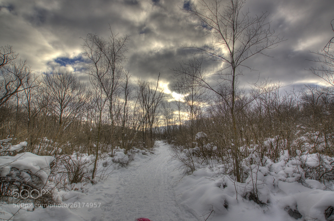 Photograph Snow Day by Noah Saydel on 500px