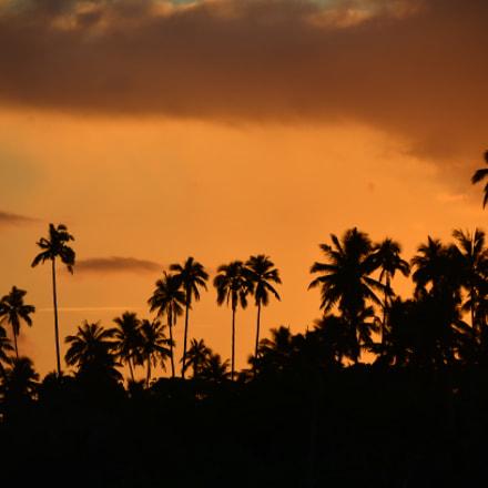 Coconuts Resport and Spa, Nikon D7000, AF-S DX VR Zoom-Nikkor 18-200mm f/3.5-5.6G IF-ED [II]