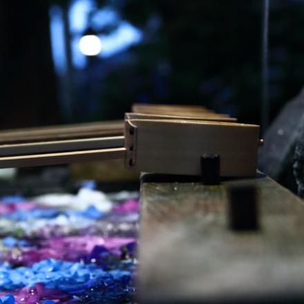 Hydrangea, Canon EOS 80D, Canon EF-S 17-55mm f/2.8 IS USM