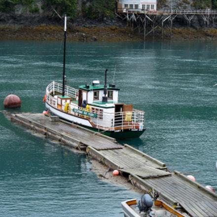 Boat in Halibut Cove, Panasonic DMC-FZ28