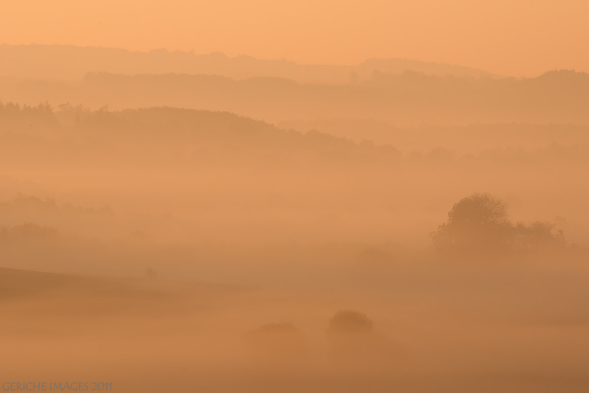 Photograph The misty cover by Geriche  Images on 500px