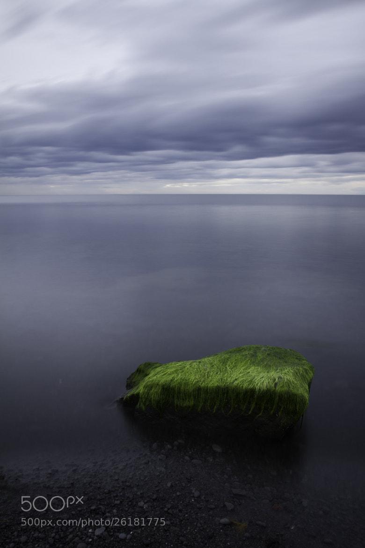 Photograph *** by Adam Skrzeszewski on 500px