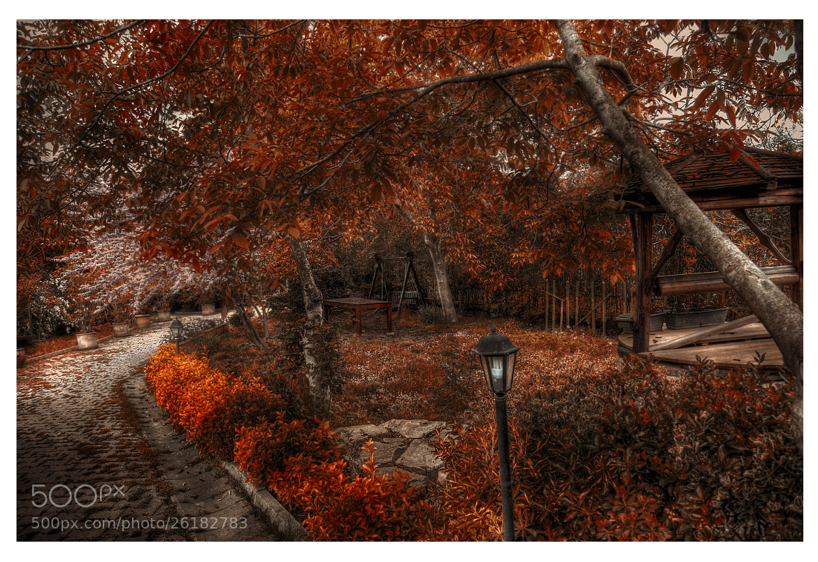 Photograph the Swing HDR by Isik Mater on 500px
