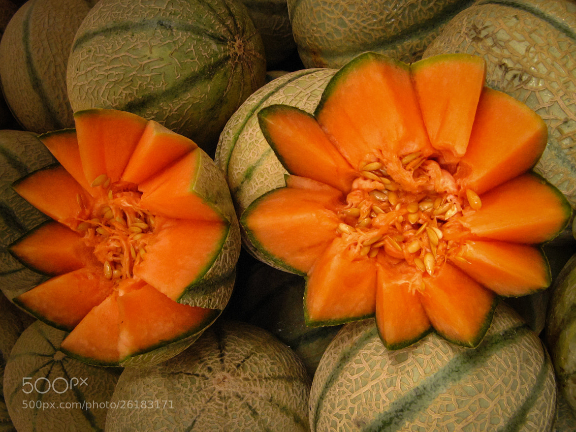 Photograph Watermelons by Ofer Perl on 500px