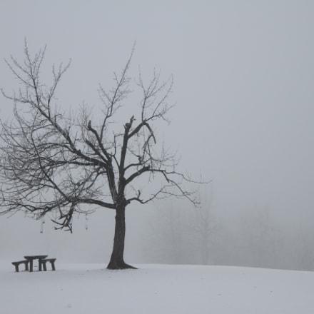 Winter landscape, Canon EOS 7D, Canon EF-S 17-55mm f/2.8 IS USM