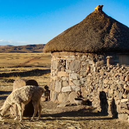 Puno, Peru, Sony DSC-H3