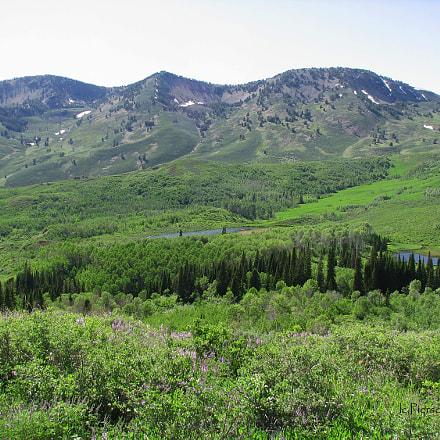 Jarbridge Wilderness Area, Canon POWERSHOT S2 IS