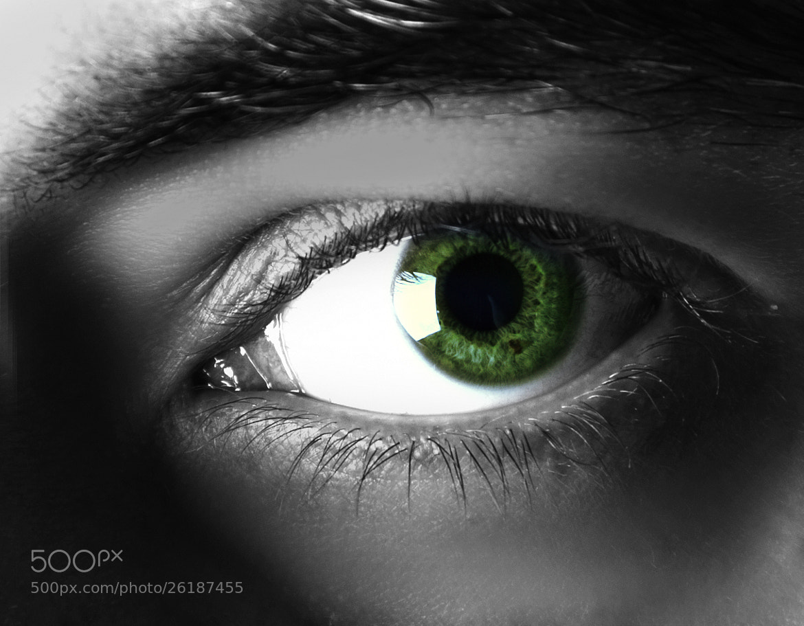 Photograph GREEN EYE by Marcio Rodrigues on 500px