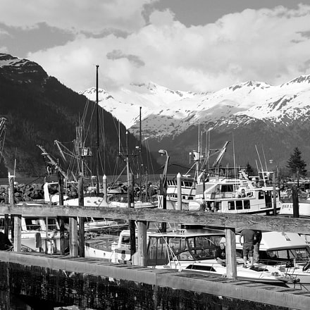 Whittier Harbor, Canon EOS REBEL SL2, Canon EF-S18-55mm f/4-5.6 IS STM
