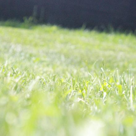 Soccer Field, Canon EOS REBEL T5, Canon EF-S 18-55mm f/3.5-5.6 IS II