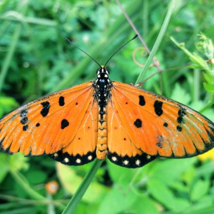 Butterfly..!..0_০, Samsung Galaxy J5