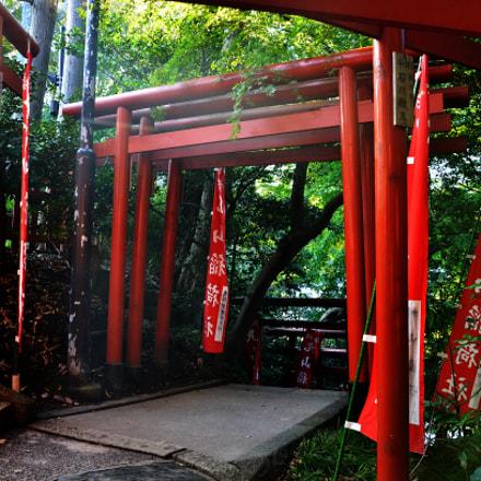 Torii Gates in Kamakura, Nikon D7000, AF-S DX VR Zoom-Nikkor 18-105mm f/3.5-5.6G ED