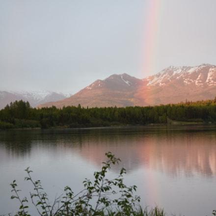 The Beauty of Alaska, Nikon D5300, AF-S DX VR Nikkor 55-300mm f/4.5-5.6G ED