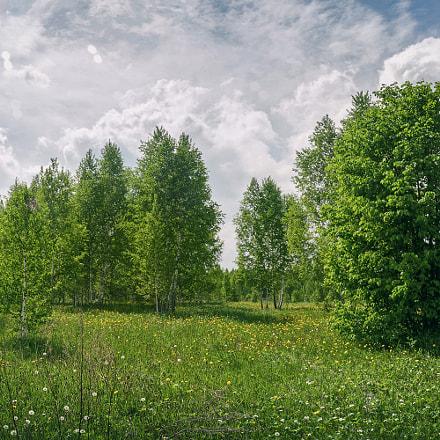 Landscape [681], Nikon COOLPIX P7700