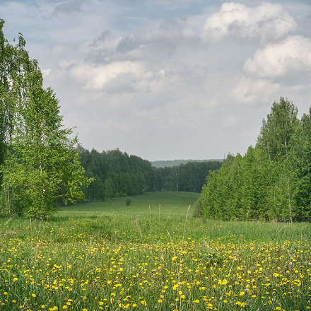 Landscape [682], Nikon COOLPIX P7700