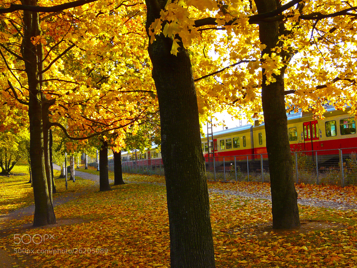 Photograph Autumn - Helsinki, FINLAND by sharon ang on 500px