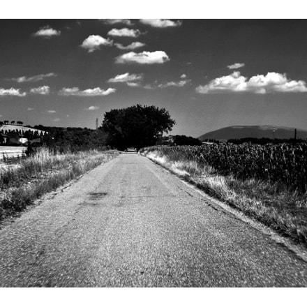 Driving..., Canon IXUS 115 HS