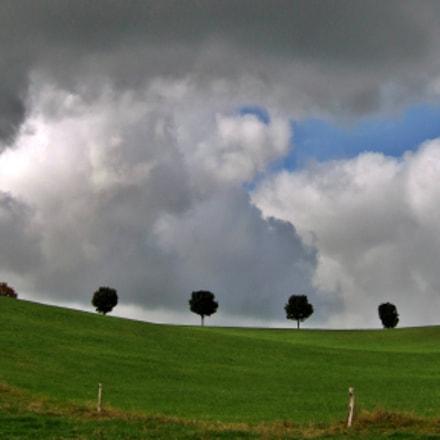 Average landscape, Fujifilm FinePix F10