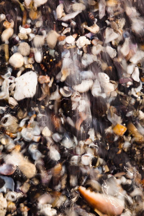 Photograph Beach Shells by Andrew Walsh Photography on 500px