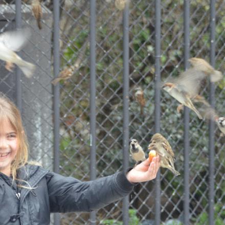 little girl in pais, Nikon D7000, AF Zoom-Nikkor 28-105mm f/3.5-4.5D IF