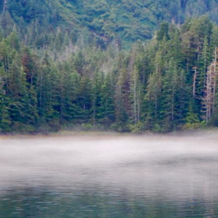 Fog Rising, Nikon COOLPIX AW110