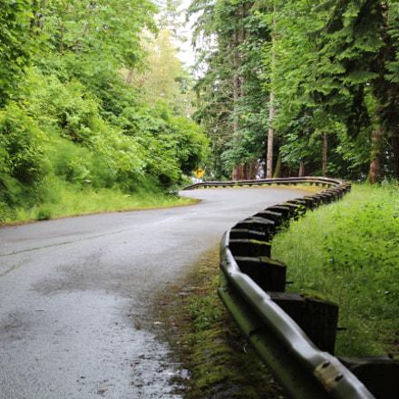 Long Windy Roads, Canon EOS REBEL T6, Canon EF-S 18-55mm f/3.5-5.6 IS II