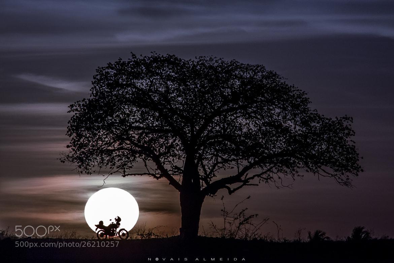 Photograph Luz Natural by Novais Almeida on 500px