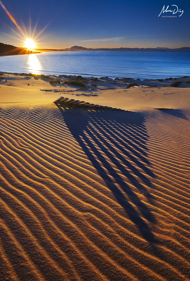 Photograph Morning shadows III by Alonso Díaz on 500px