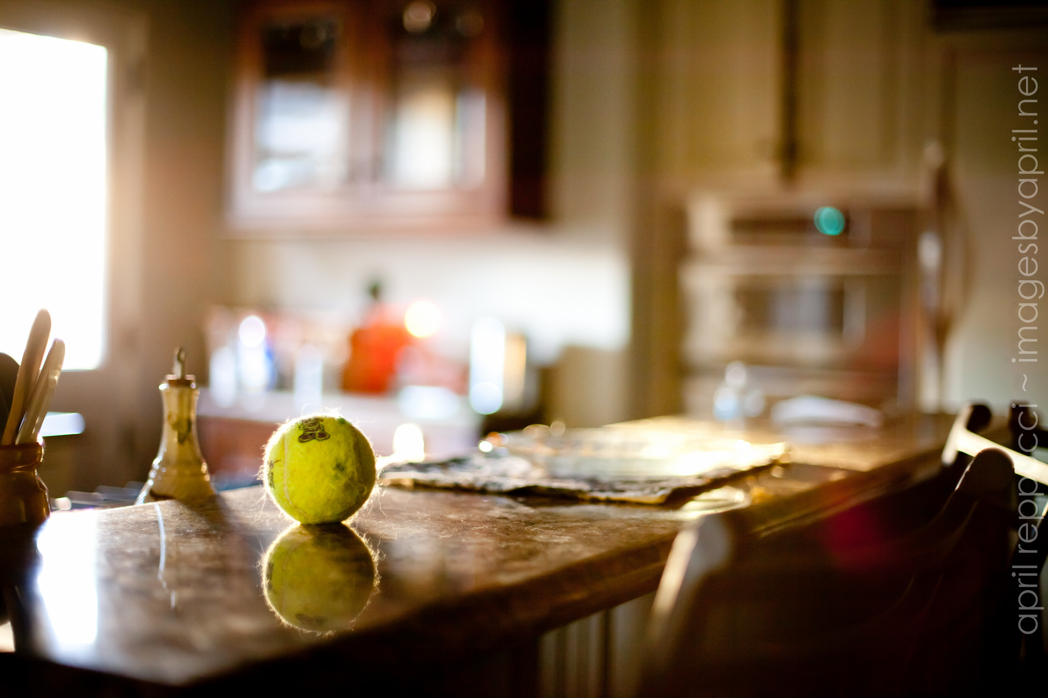 Photograph Ball on The Counter by April Reppucci on 500px