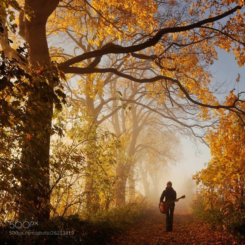 Photograph anthem for the autumn by Sebastian Luczywo on 500px