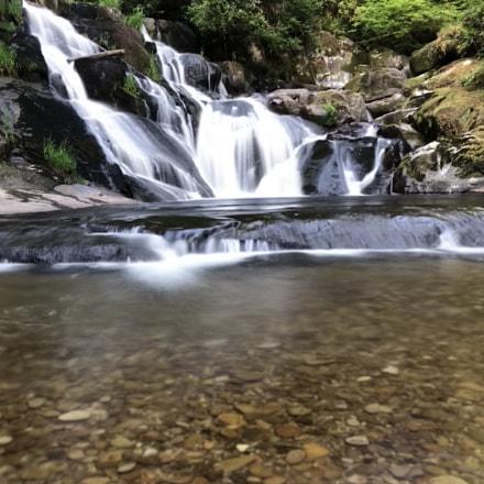 Beaver Falls, Apple iPhone 8 Plus