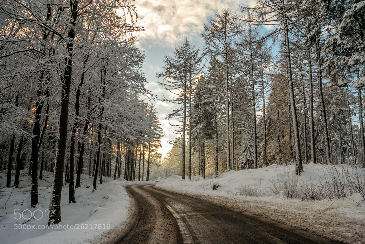 Photograph snowy forest road by Alan Smiles on 500px