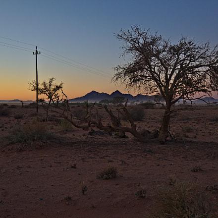 Desert morning, Canon EOS 5D MARK IV