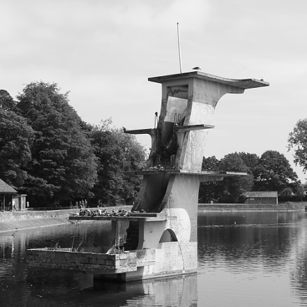 Journey around Coate water, Canon EOS 750D, Canon EF-S 18-55mm f/3.5-5.6 IS STM