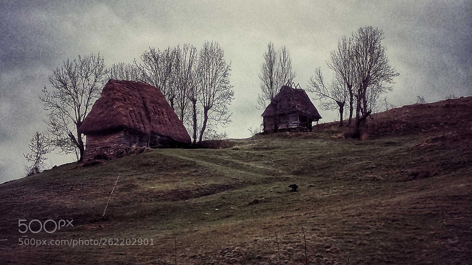 Untitled photography