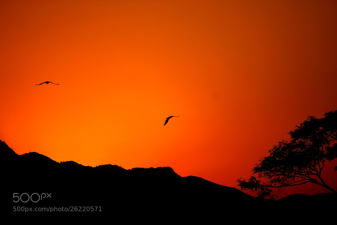 Photograph Sunset  by Maheshwor Kc on 500px
