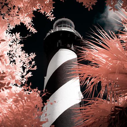Floridian Adventure, Canon EOS 10D