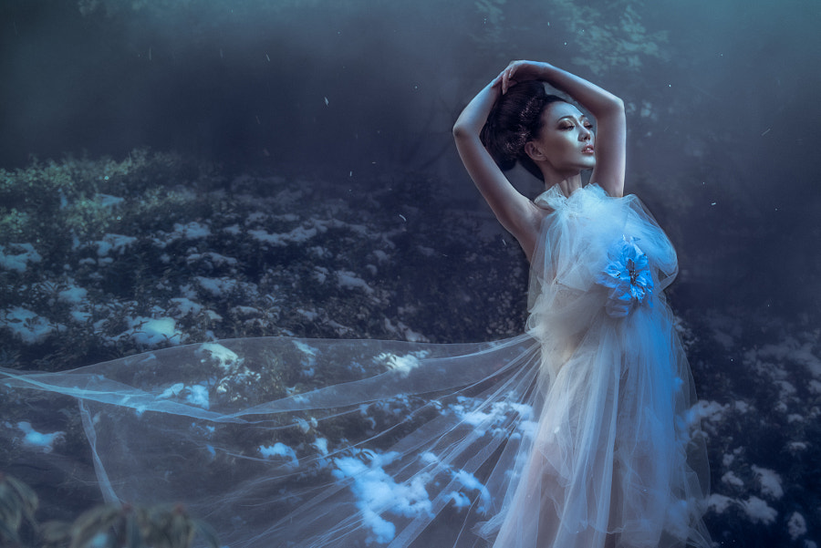 Moonflower de Jiamin Zhu sur 500px.com