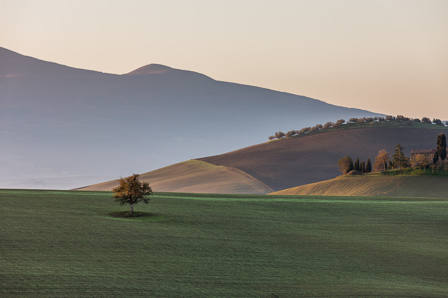 Photograph Tuscan Fields.  by Hans Kruse on 500px