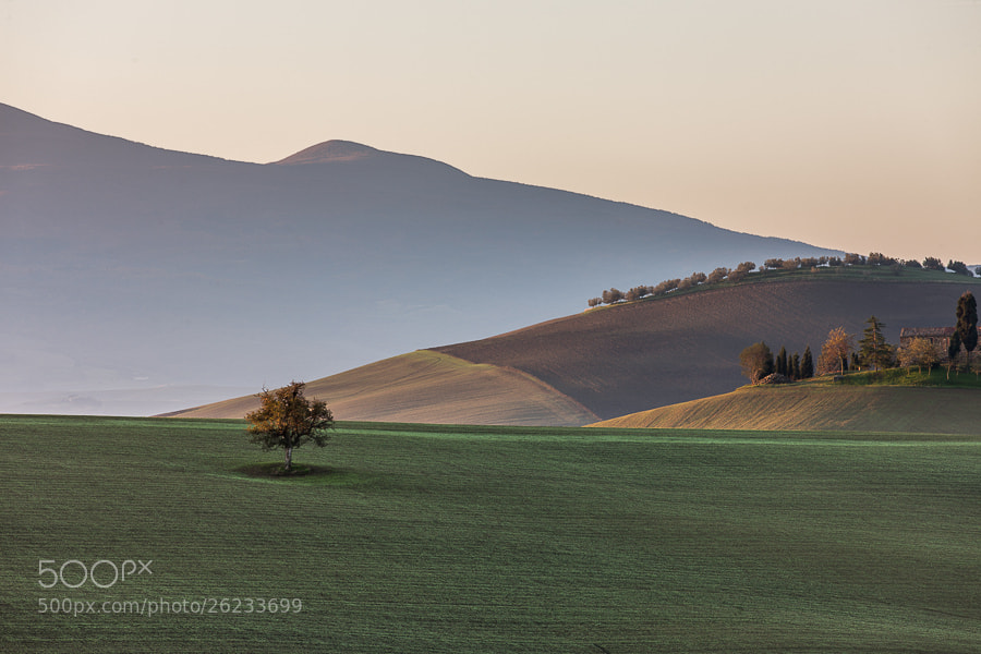 "<a href=""http://www.hanskrusephotography.com/Workshops/Tuscany-Workshop-November-11/24503340_KkvZqW#!i=2370478127&k=RQZ3Xmk&lb=1&s=A"">See a larger version here</a>