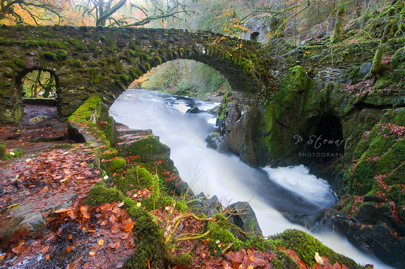 Photograph Bridge over the River Braan by Philip Stewart on 500px