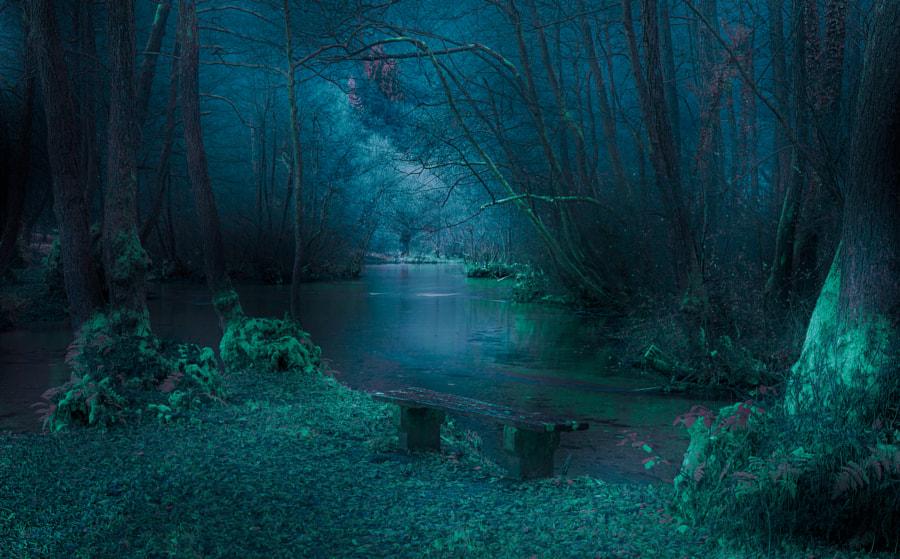River Bench, автор — Mevludin Sejmenovic на 500px.com