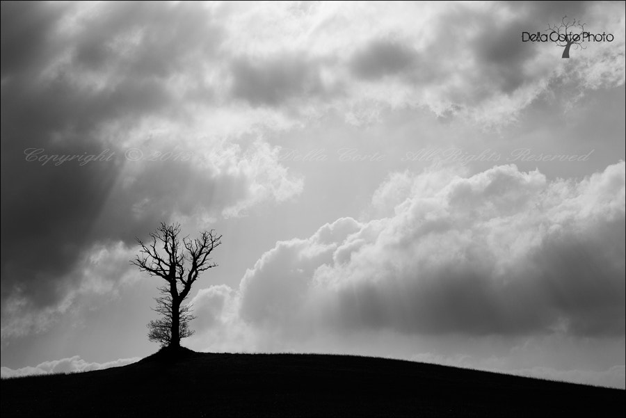 Photograph Soul and sky . by Alfonso  Della Corte  on 500px