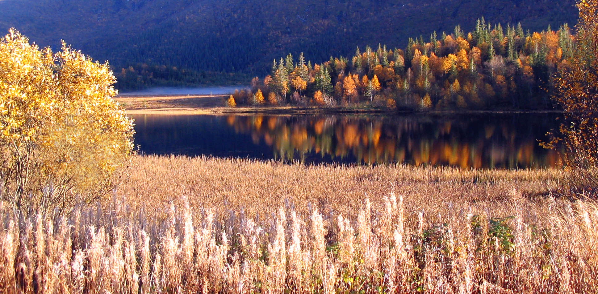 Photograph Autumn by Kent Lennart Vassdal on 500px