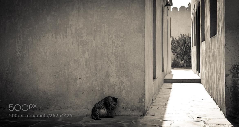Photograph Quiet Abu Dhabi by Anna  Goodrum on 500px