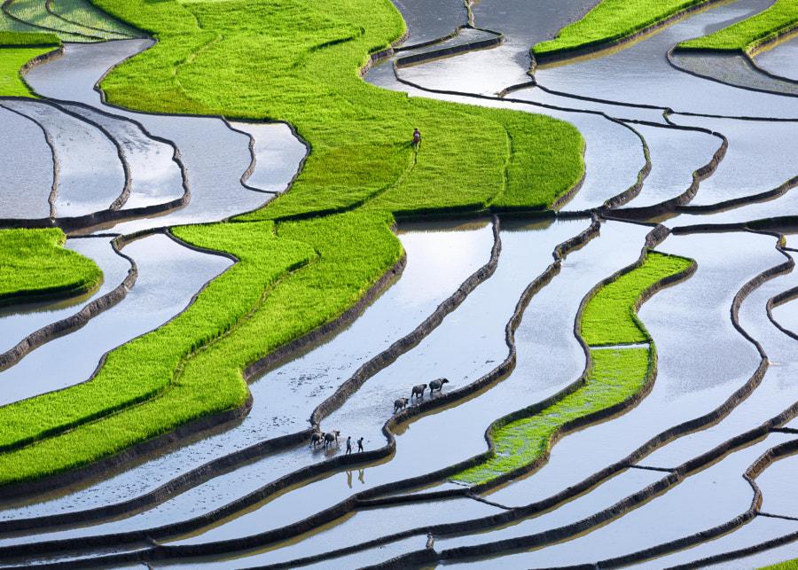 Tu Le Terraces by Duc Bui Viet on 500px.com