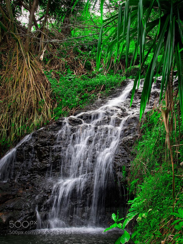 Photograph Kauai - 2 by Paul Howard on 500px