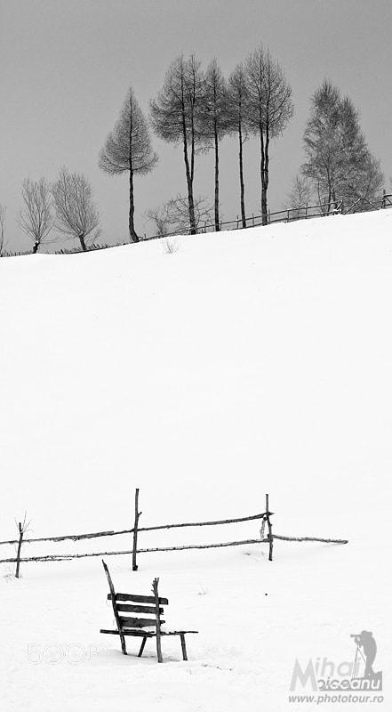Photograph Silence of snow by Mihai Moiceanu on 500px